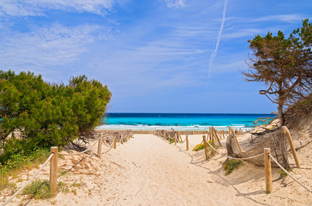 Photo for Entrance to sandy Cala Agulla beach, Majorca island, Spain - Royalty Free Image