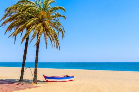 Photo pour Fishing boat and palm trees on sandy beach in Estepona town on Costa del Sol, Spain - image libre de droit