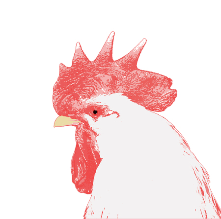Stylized as figure a photo of the cock