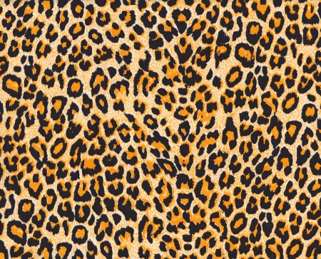 Texture of leopard skin background mural