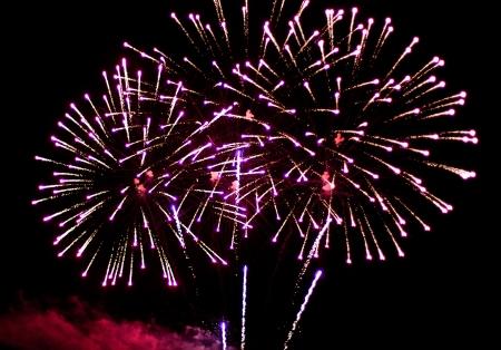 Photo pour Celebratory bright firework in a night sky - image libre de droit