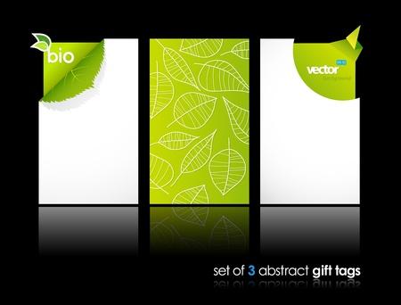 Illustration pour Set of nature gift cards with reflection.  - image libre de droit