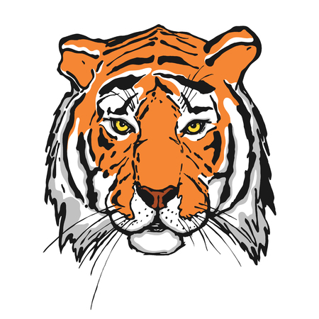 Illustrazione per Tiger. Head. Wild animal. The logo for your design. Hand drawn. Vector illustration. - Immagini Royalty Free