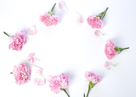 Photo for Pink carnations flower for Mother's day on white background - Royalty Free Image