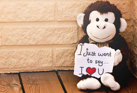 A monkey with the message I love you