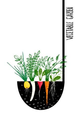 Illustration pour Grow Vegetable Garden and Cook Soup   - image libre de droit
