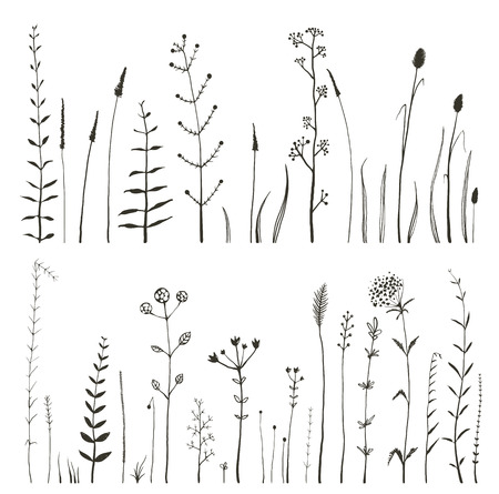 Illustration pour Sketchy Wild Field Flowers and Grass on White Monochrome Collection. Rustic colorful meadow growth illustration set. Vector - image libre de droit