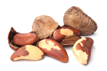 Photo for Brazil nuts on white background - Royalty Free Image