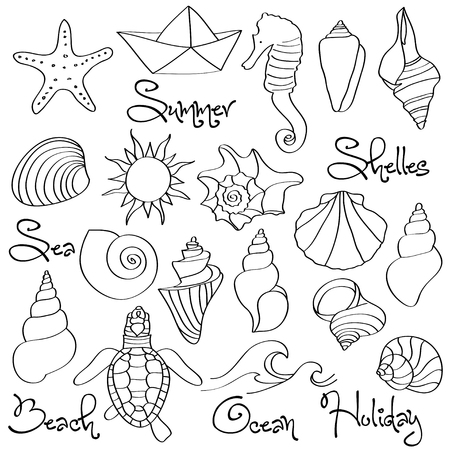 Illustration for Hand drawn doodle Seashells and Sea elements set. Vector format - Royalty Free Image