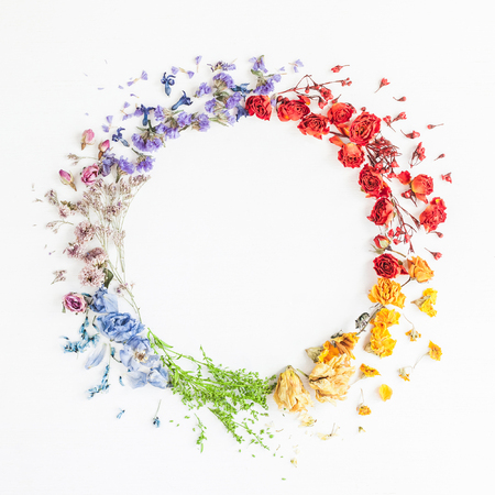Photo pour Flowers composition. Wreath made of rainbow flowers on white background. Flat lay, top view - image libre de droit