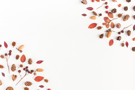 Foto de Autumn composition. Frame made of autumn leaves, acorn, pine cones on white background. Flat lay, top view, copy space - Imagen libre de derechos