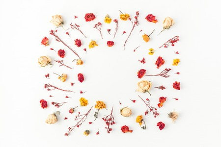 Photo pour Autumn composition. Frame made of autumn dried flowers on white background. Flat lay, top view, copy space - image libre de droit