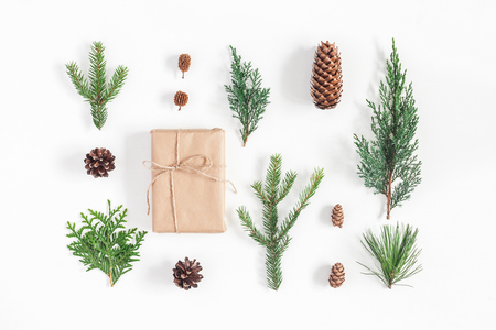 Foto de Christmas composition. Gift, different winter plants on white. Christmas, winter, new year concept. Flat lay, top view - Imagen libre de derechos