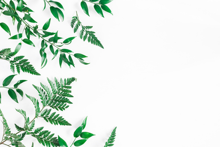 Photo for Leaf pattern. Green tropical leaves on white background. Flat lay, top view, copy space - Royalty Free Image