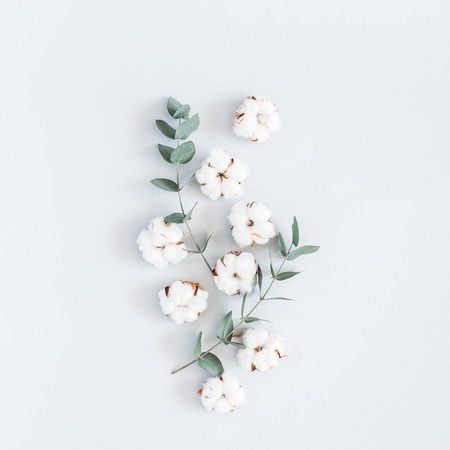 Foto de Flowers composition. Pattern made of cotton flowers and eucalyptus branches on pastel blue background. Flat lay, top view, square - Imagen libre de derechos