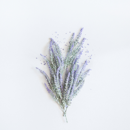 Photo pour Lavender flowers bouquet on pastel gray background. Flat lay, top view, square - image libre de droit