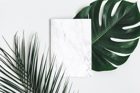Photo pour Summer composition. Tropical palm leaves, marble paper blank on pastel gray background. Summer concept. Flat lay, top view, copy space - image libre de droit