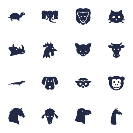 Set Of 16 Alive Icons Set.Collection Of Gecko, Steed, Hog And Other Elements.