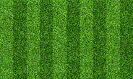 Photo pour Green grass field background for soccer and football sports. Green lawn pattern and texture background. Close-up image. - image libre de droit