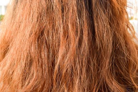 Foto de Bad hair from the use of chemicals in the hair. - Imagen libre de derechos