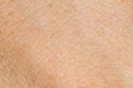 Photo for Background of the human skin. macro - Royalty Free Image