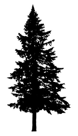Illustration pour Pine tree silhouette isolated on white background - image libre de droit