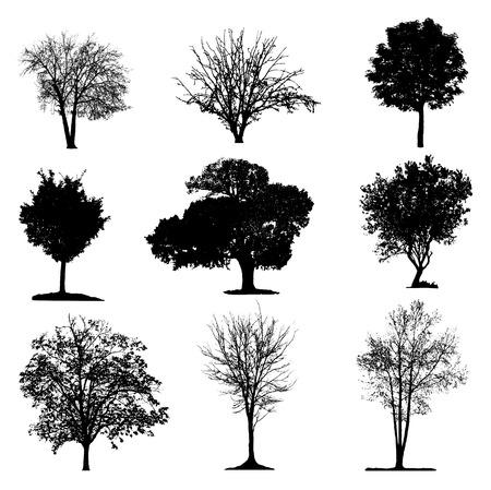 Illustration pour Trees silhouette collection - image libre de droit