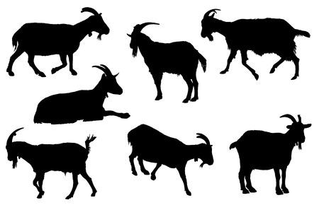 Ilustración de Goat silhouette collection. Rural farm animals on a white background - Imagen libre de derechos