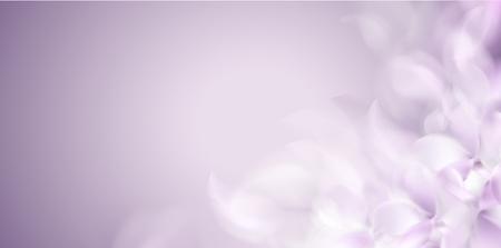 Ilustración de Soft spring white background with purple blurred flower petals vector illustration - Imagen libre de derechos
