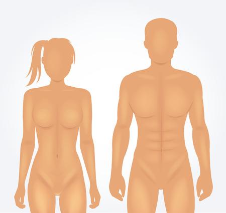 Ilustración de Man and woman body template. Vector illustration - Imagen libre de derechos