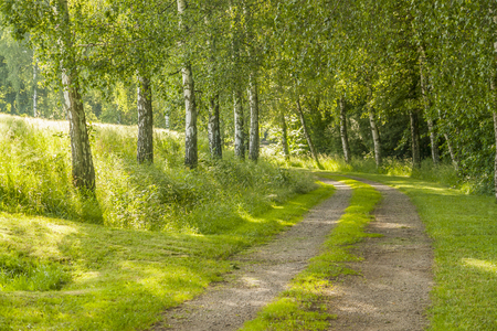 Photo pour idyllic field path at spring time in Southern Germany - image libre de droit