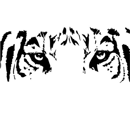 Illustration for vector abstract tiger head. - Royalty Free Image
