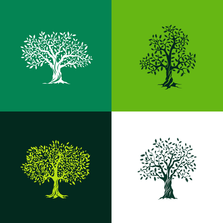 Ilustración de Beautiful oak and olive trees silhouette set on green background. Infographic modern isolated vector sign. Premium quality illustration logo design concept. - Imagen libre de derechos
