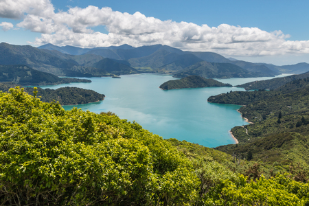 Photo for aerial view of Queen Charlotte Sound in Marlborough Sounds, South Island, New Zealand - Royalty Free Image