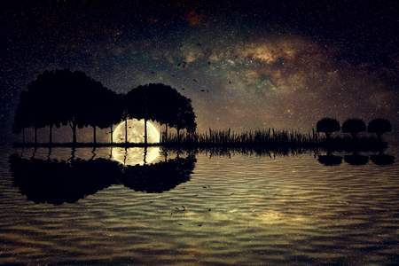Photo for Trees arranged in a shape of a guitar on a starry sky background in a full moon night. Music island with a guitar reflection in water - Royalty Free Image