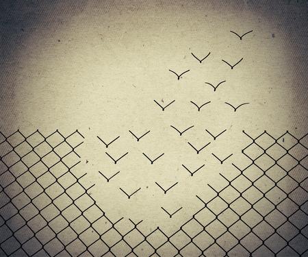 Photo pour Metallic wire mesh transform into flying birds. Old paper, vintage background - image libre de droit