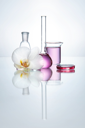 Foto de Laboratory Transparent Glassware With Chemical Liquid And Flower Orchid On White Background. High Resolution. - Imagen libre de derechos