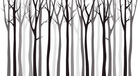 Photo pour Birch tree wood silhouette on white background - image libre de droit
