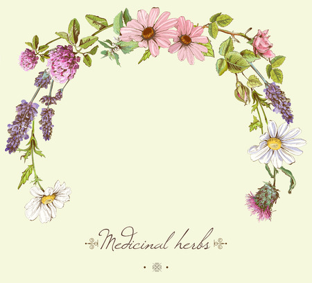 Ilustración de vintage hand-drawn frame with wild flowers and herbs. Layout design for cosmetics, store, beauty salon, natural and organic products. Can be used like as - Imagen libre de derechos