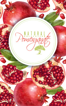Illustration for Pomegranate vertical round banner - Royalty Free Image