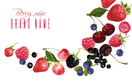 Illustration for Berry mix falling banner - Royalty Free Image