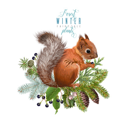 Illustration pour Winter squirrel composition - image libre de droit