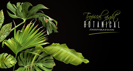 Illustration for Tropical night horizontal banner - Royalty Free Image