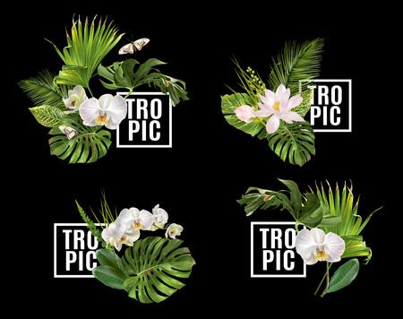 Illustration pour Tropic plants banner set - image libre de droit