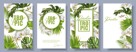 Illustration pour Vector botanical vertical banners set with tropical leaves, orchid flowers and butterflies on white. Design for cosmetics, spa, health care products, travel company. Can be used as summer background - image libre de droit