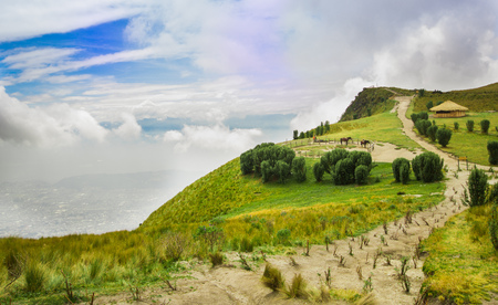 Photo pour Panoramic view at the Pichincha volcano, with some native andes plants and horses with a typical hut in the horizont, in the top of Pichincha mountain in Quito, Ecuador - image libre de droit