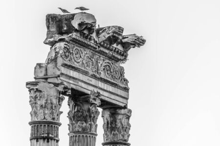 Foto per Detailed view of temple ruins in Roman Forum, Rome, Italy. Black and white image. - Immagine Royalty Free