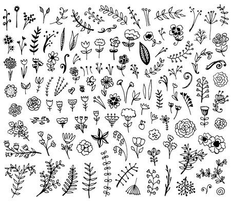 Illustration pour Floral hand drawn vintage set. Vector flowers and leaves collection. Sketch art illustration. - image libre de droit