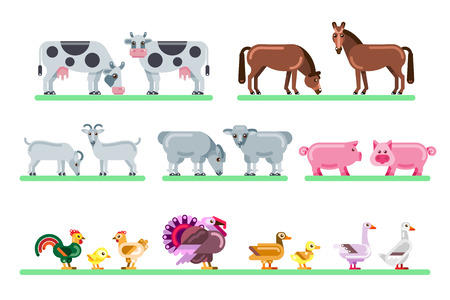 Farm animals set. Vector flat illustration of barnyard. Cute colorful characters isolated on white background.