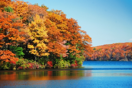 Photo for Autumn colorful foliage over lake with beautiful woods in red and yellow color. - Royalty Free Image